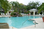 Visit the Official Website of South Tampa's  tropical oasis.