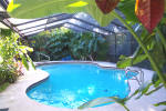 Tropical and private pool area of St Petersburg Florida home marketed by Sharon Simms real estate agent  ALVA International, Inc.Real Estate St Petersburg Florida Tampa Bay